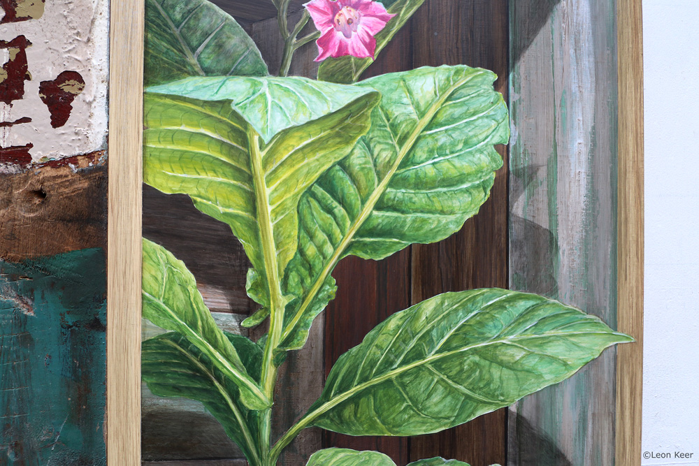 3D painting 'Nicotiana tabacum' by Leon Keer